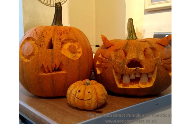 Pumpkin Contest by YouCom Direct