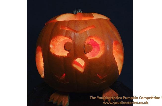 Afra's Owl pumpkin is uniquely adorable