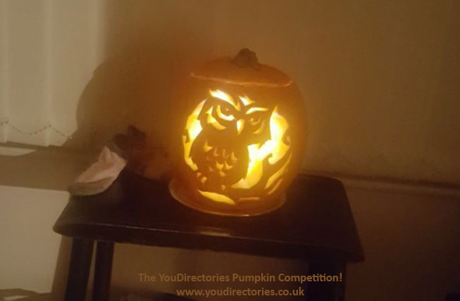 Elisa's mummy, Hasnaa, carved this Owl